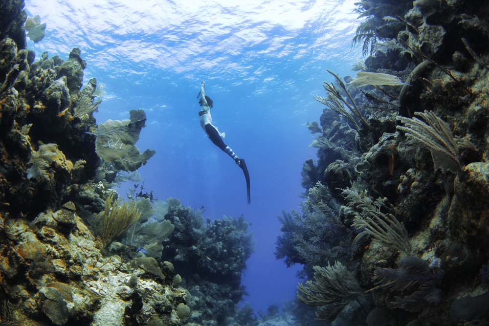 Freedive Israel - in the Red Sea of Eilat